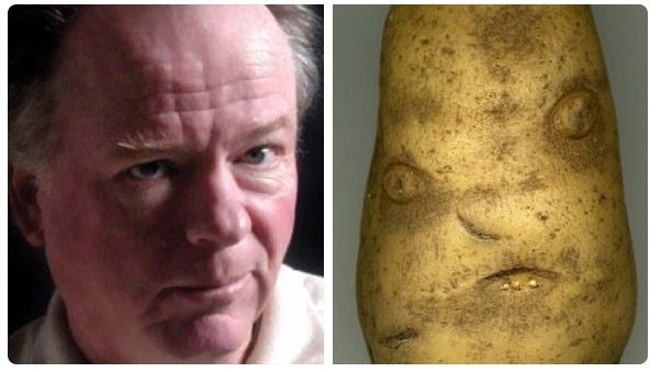 soucheraypotato